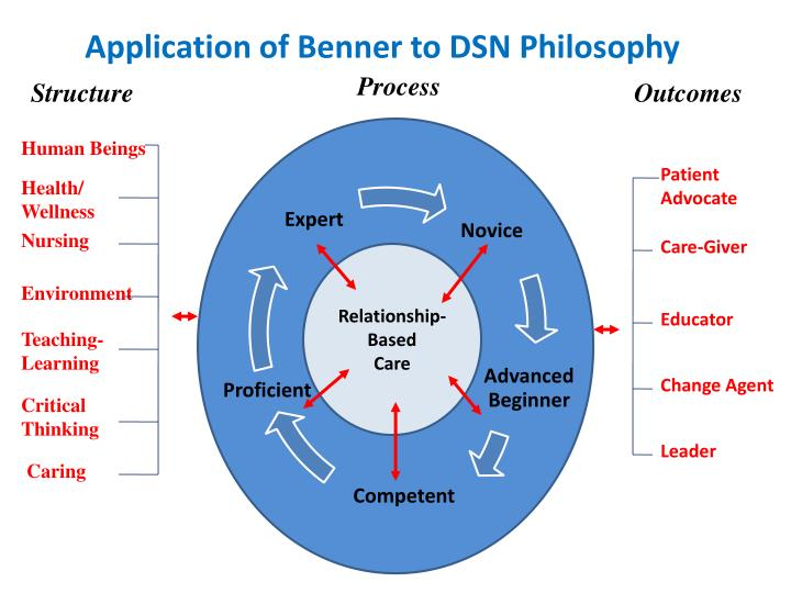 application of benner to dsn philosophy n.