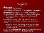 enzymes1