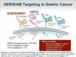 her erbb targeting in gastric cancer