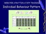 individual behaviour pattern1