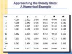 approaching the steady state a numerical example1