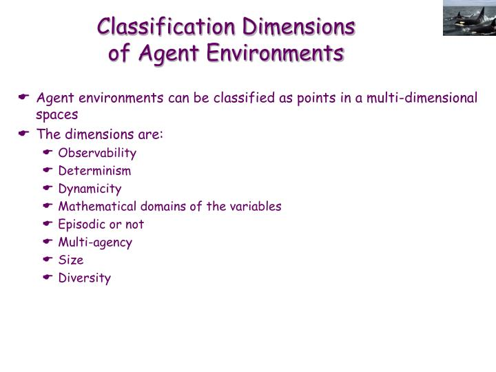Classification Dimensions