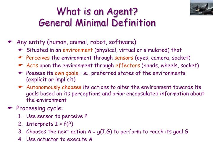 What is an Agent?