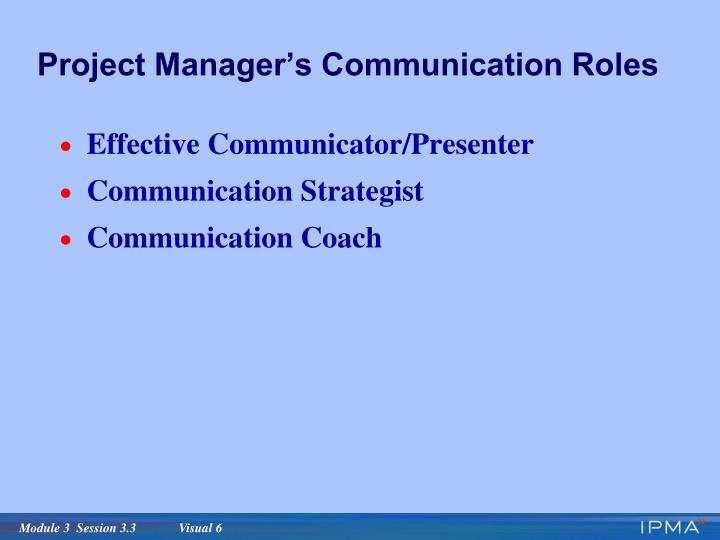Project Manager's Communication Roles