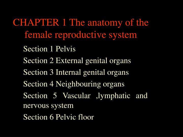 chapter 1 the anatomy of the female reproductive system n.