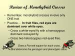review of monohybrid crosses