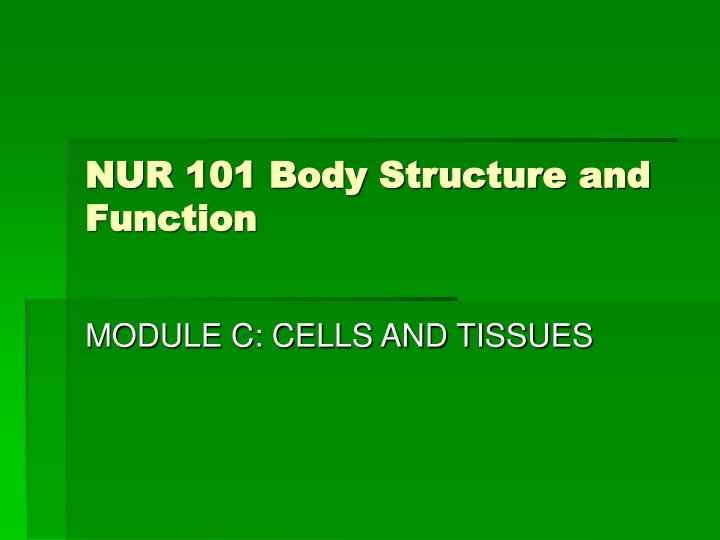 nur 101 body structure and function n.