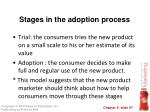 stages in the adoption process1