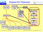 stripped dst replication