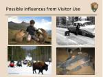 possible influences from visitor use