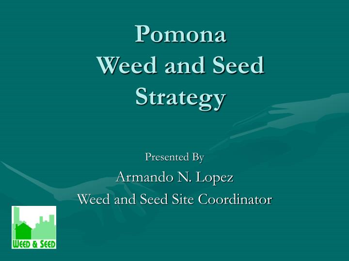 pomona weed and seed strategy n.