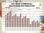 rsa maize commercial area planted and production