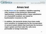 ames test1