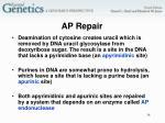 ap repair