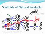 scaffolds of natural products1