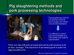pig slaughtering methods and pork processing technologies