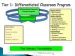 tier 1 differentiated classroom program