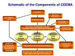 schematic of the components of ceema