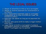the legal issues1