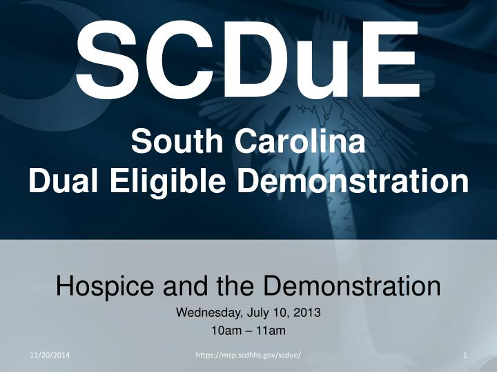 scdue south carolina dual eligible demonstration n.