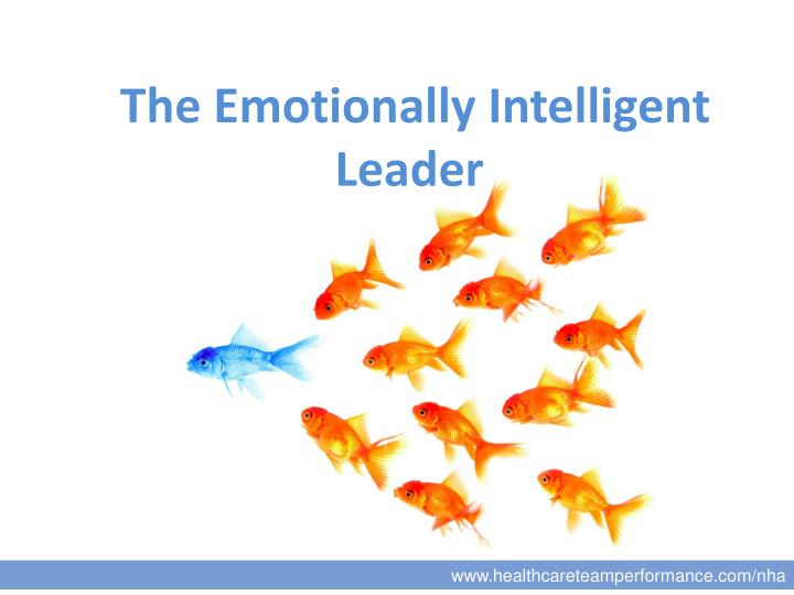 the emotionally intelligent leader n.