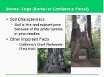 biome taiga boreal or coniferous forest2