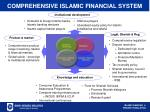 comprehensive islamic financial system