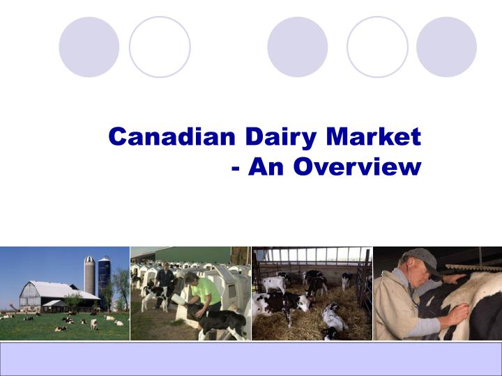 canadian dairy market an overview n.