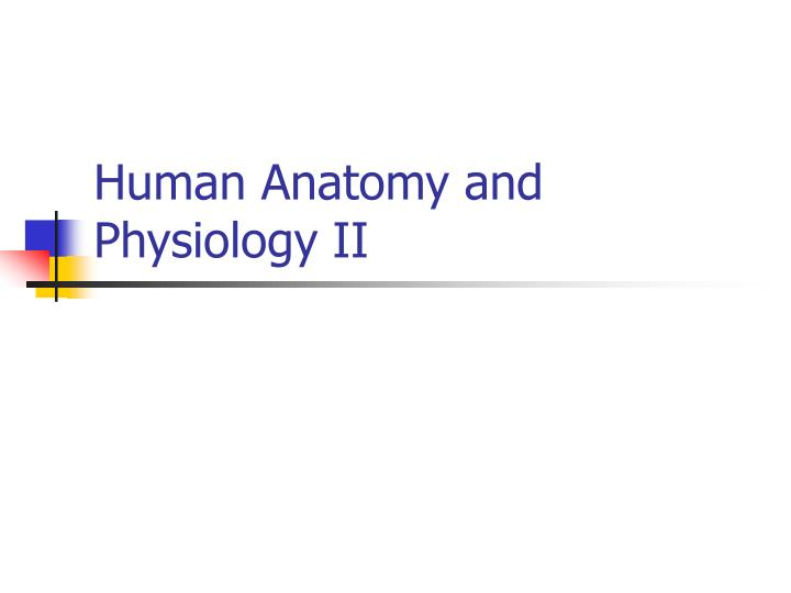human anatomy and physiology ii n.