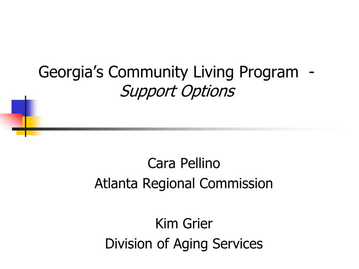 georgia s community living program support options n.
