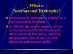 what is neuroaxonal dystrophy