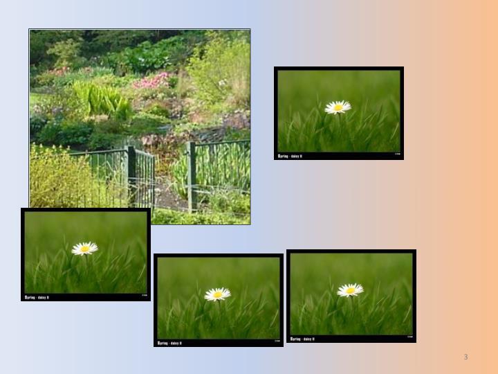 Tri sandhya use this slide show to enhance your gayatri sandhya