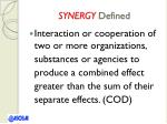 synergy defined