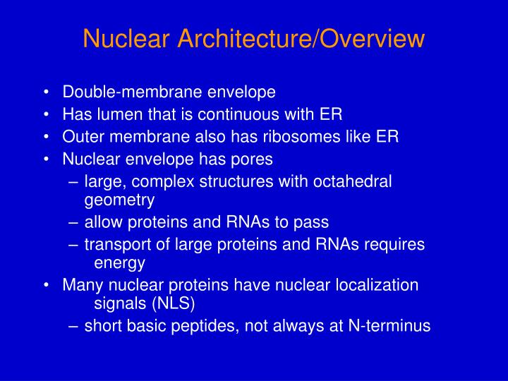 nuclear architecture overview n.