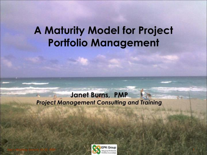 a maturity model for project portfolio management n.