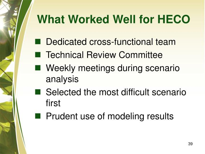 What Worked Well for HECO