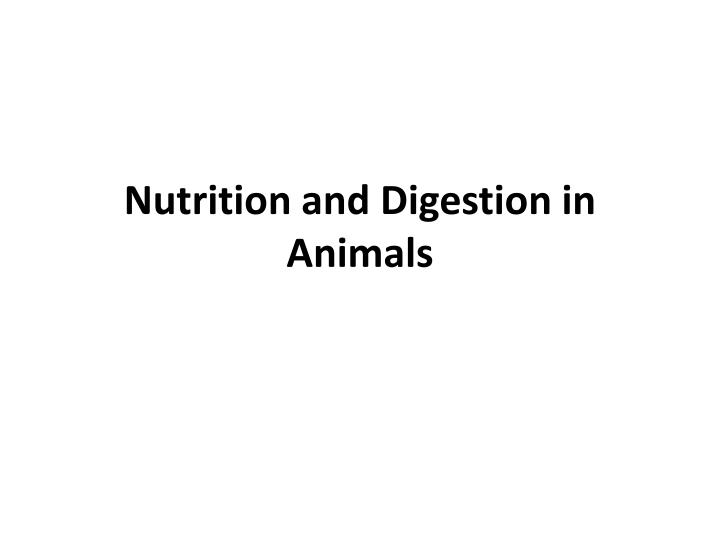 nutrition and digestion in animals n.