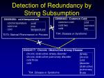 detection of redundancy by string subsumption1