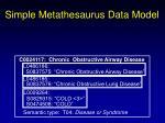 simple metathesaurus data model