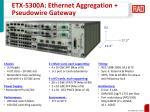 etx 5300a ethernet aggregation pseudowire gateway