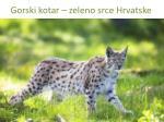 gorski kotar zeleno srce hrvatske