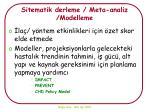 sitematik derleme meta analiz modelleme