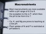 macronutrients1
