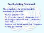 one budgetary framework1