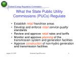 what the state public utility commissions pucs regulate