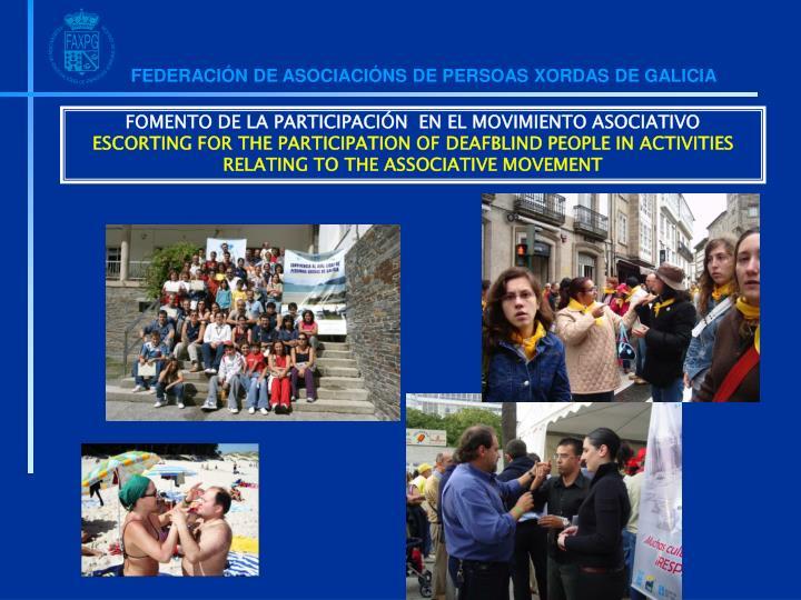 FOMENTO DE LA PARTICIPACIÓN  EN EL MOVIMIENTO ASOCIATIVO