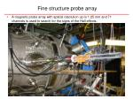fine structure probe array