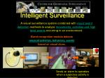 intelligent surveillance