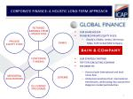corporate finance a holistic long term approach