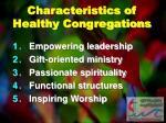 characteristics of healthy congregations